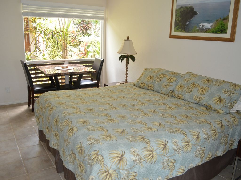 The newly renovated Studio Unit sleeps 2 people and is furnished with a king bed.